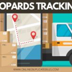 Leopard Tracking - How to track Leopards Courier and Delivery Services